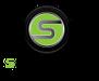 Spectrum Automotive Holdings