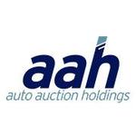 Auto Auction Holdings